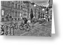 Freiburg Road Homes  Greeting Card