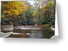 French Broad River In Fall Greeting Card