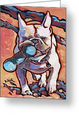 French Bulldog And Toy Greeting Card