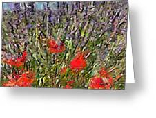 French Lavender Field Greeting Card