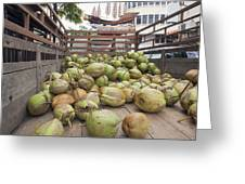 Fresh Coconuts Delivery Truck Greeting Card