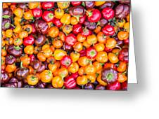 Fresh Colorful Hot Peppers Greeting Card