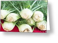 Fresh Fennel At The Market Greeting Card