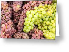 Fresh Grapes On Display Greeting Card