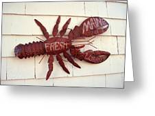 Fresh Maine Lobster Sign Boothbay Harbor Maine Greeting Card