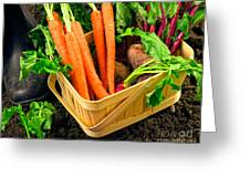 Fresh Picked Healthy Garden Vegetables Greeting Card