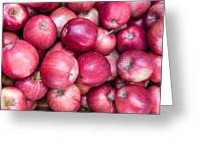 Fresh Red Apples Greeting Card