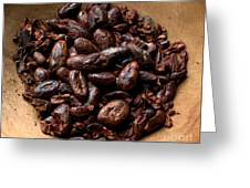 Fresh Roasted Cocoa Beans - Nibs Greeting Card