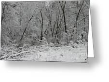 Fresh Snow At Roquin Greeting Card