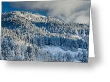 Fresh Snow On The Mountain Greeting Card