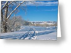 Fresh Tracks Greeting Card