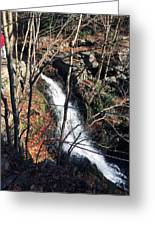 Fresh Water Streams Around Poconos Pa America Usa  Greeting Card