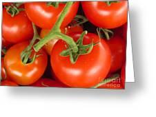 Fresh Whole Tomatos On Vine Greeting Card