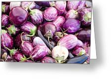 Freshly Harvested Purple Eggplants Greeting Card
