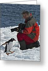 Friend Of The Penguins... Greeting Card