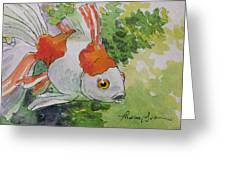 Friendly Fantail Tiny Goldfish Painting Greeting Card