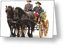 Friesian Carriage Greeting Card
