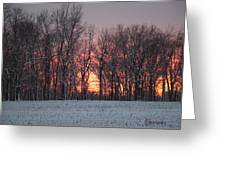 Frigid Warmth Greeting Card