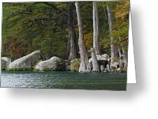 Frio River 2 Greeting Card
