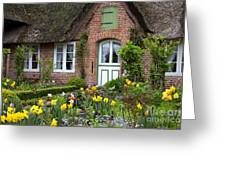 Frisian House Greeting Card