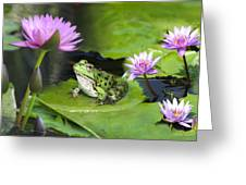 Frog And Water Lilies Greeting Card