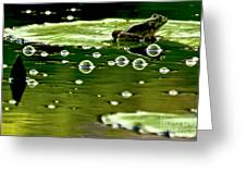 Frog Pond Space Galaxy Greeting Card