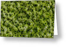 Frog Spawn Greeting Card