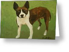 Frog The Dog Greeting Card