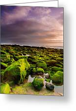 From Rock To Rock Greeting Card