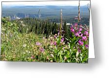 From The Mountain Greeting Card