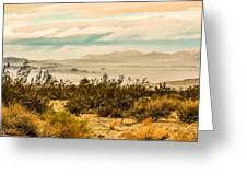 From Top Of The Mountain At Joshua Tree National Park Greeting Card