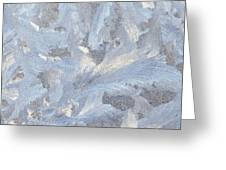 Frost Crystal On Window Greeting Card