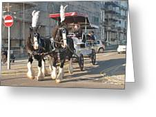 Frost Fair Horses Hastings Greeting Card