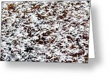 Frost Flakes On Ice - 03 Greeting Card