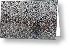 Frost Flakes On Ice - 14 Greeting Card