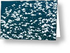 Frost Flakes On Ice - 34 Greeting Card