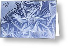 Frost In Blue Greeting Card