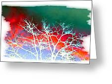 Frost Shrouded Tree Greeting Card