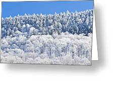 Frosted Mountainside Greeting Card