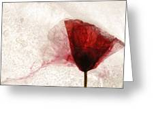 Frosted Poppy Greeting Card
