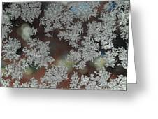 Frosted Window Greeting Card