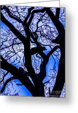 Frosty Blue Abstract Greeting Card