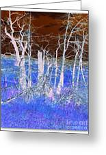 Frosty Forest Greeting Card