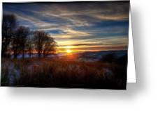 Frosty Grasses Greeting Card
