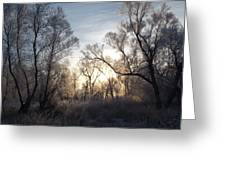 Frosty Morn 3 Greeting Card
