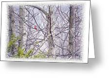 Frosty Morning Song Greeting Card