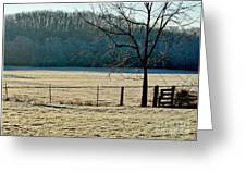 Frosty Morning Winter Landscape Greeting Card