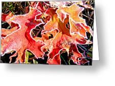 Frosty Oak Leaves Greeting Card