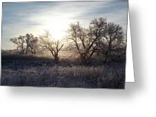 Frosty Rise Greeting Card