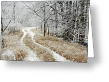 Frosty Trail 2 Greeting Card